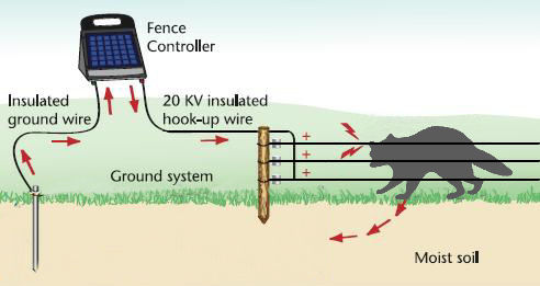 howfenceworks2 pest Electric Fence Circuit Diagram at mifinder.co