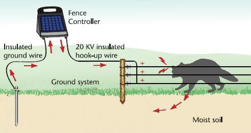 solar wire diagram pest solar wire fence diagram #5